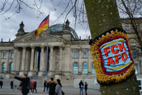 Germany's far right: From the AfD to neo-Nazis   Germany