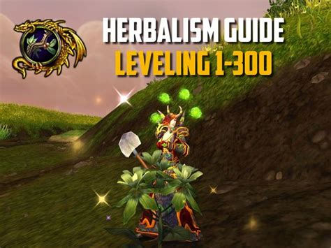 Classic WoW - Best Herbalism Guides - WowIsClassic