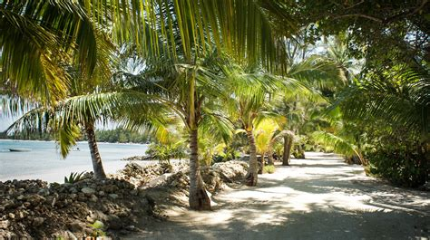 All-Inclusive Rooms   Andros Island Resort   Smallhope Bay