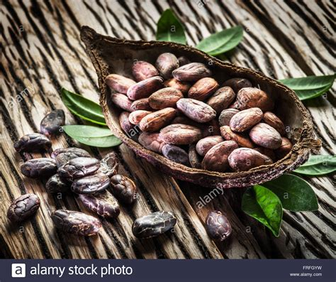 Cacao Beans With Cocoa Fruit Stockfotos & Cacao Beans With